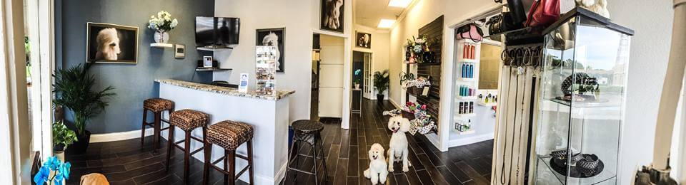 Pets of Perfection Salon